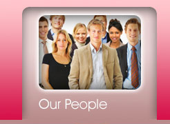 Go Web Systems - Our People